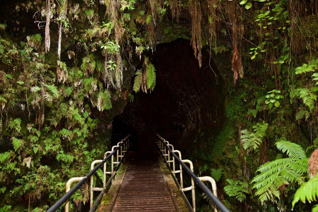 Entrance to the Thurston Lava Tube.