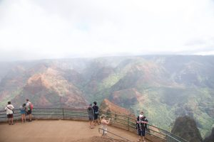 Picture at the Waimea Canyon lookout.