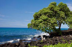 The beauty of Hawaii